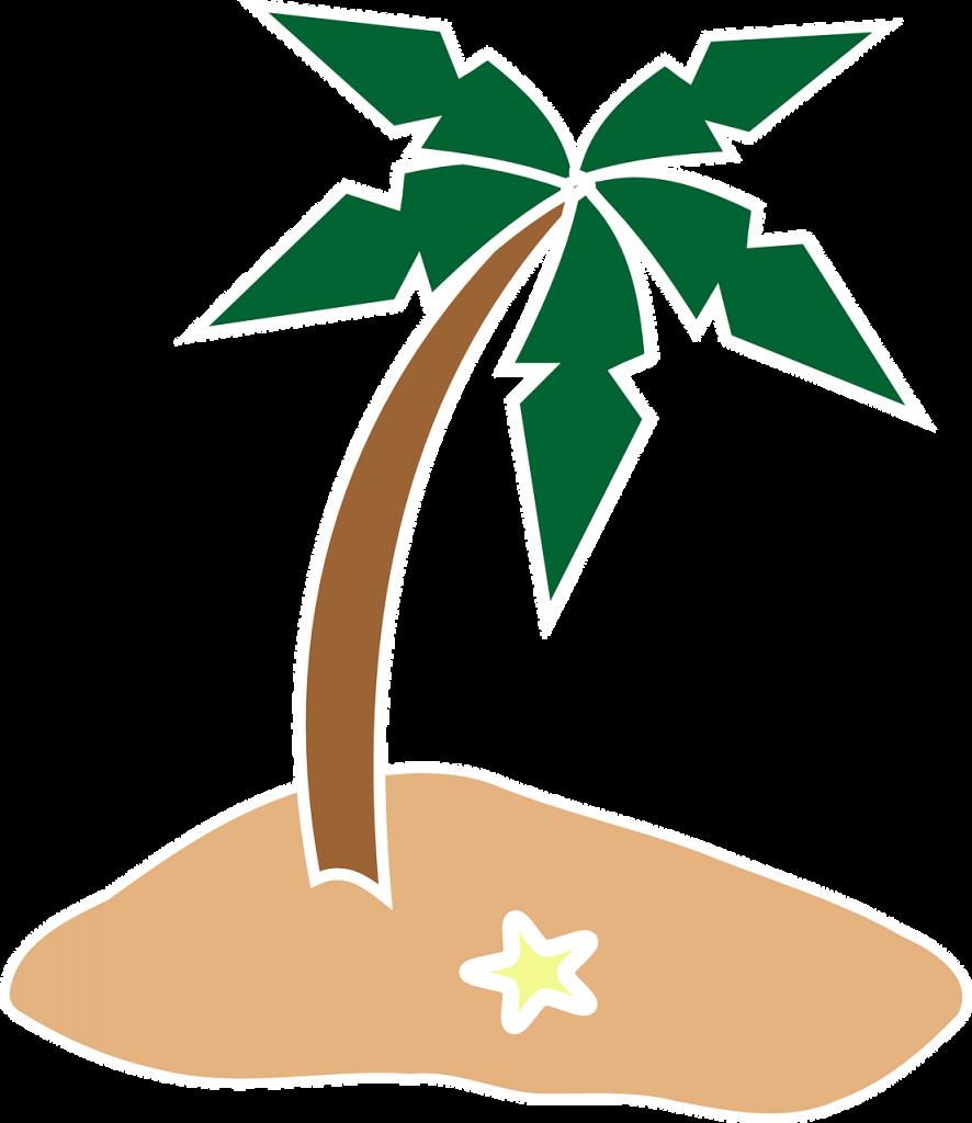 אי עם עץ דקל